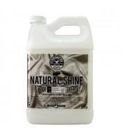 Ošetření a oživení plastů Natural Shine (1 Gal)